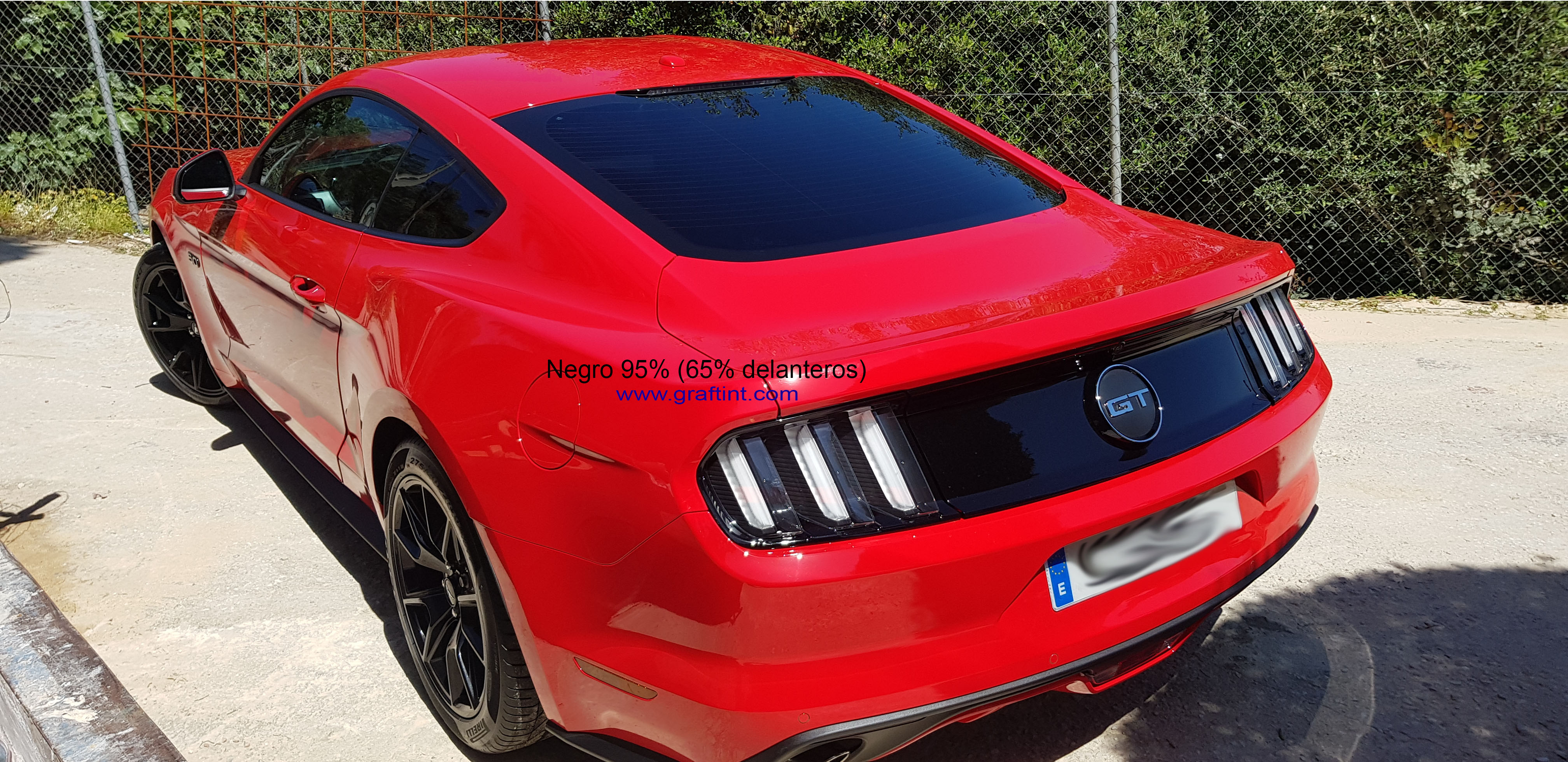 Ford Mustang - 95% y 65% (2)