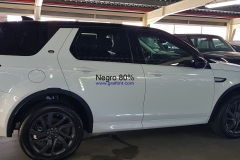 Discovery Sport - 80% (1)