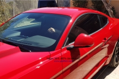 Ford Mustang - 95% y 65% (3)