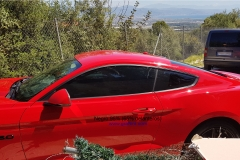 Ford Mustang - 95% y 65% (4)